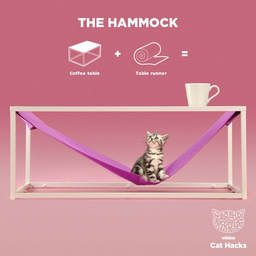 5a7048bba0458The-Hammock-HERO-IMAGE
