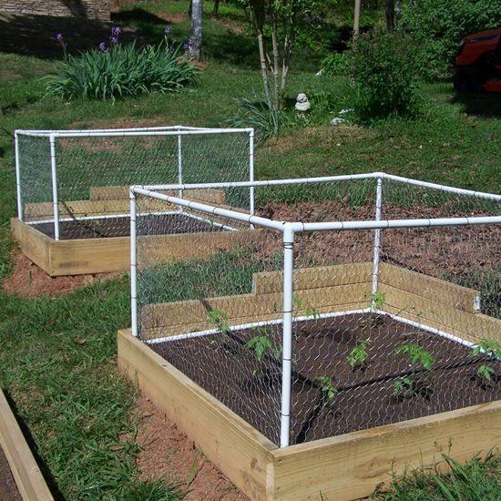 架有網子的菜圃菜園