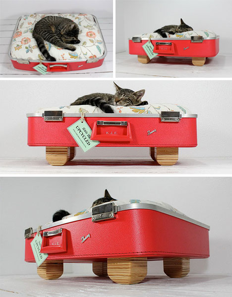 cat-bed-red-suitcase
