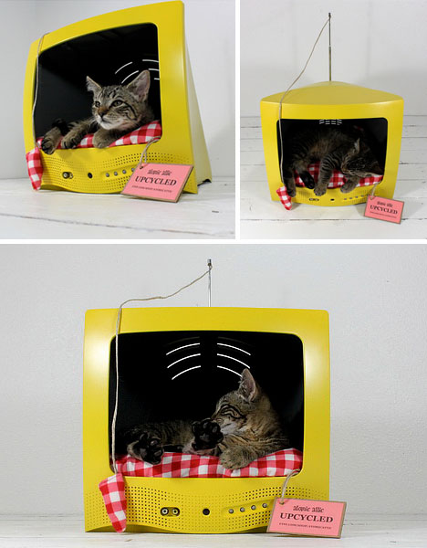 cat-bed-television-set