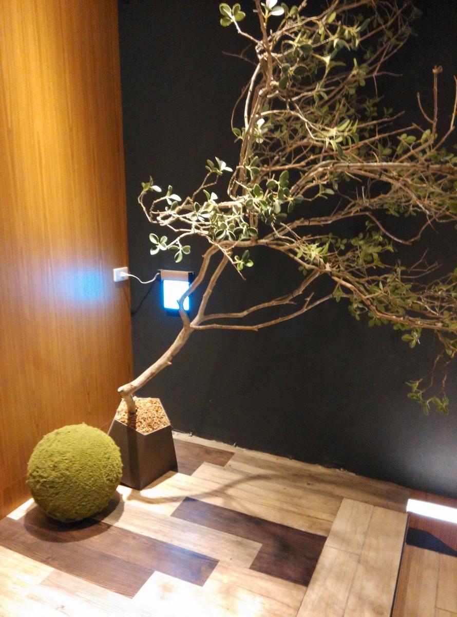 台灣 台中 異人館 咖啡館 餐廳樓梯轉角