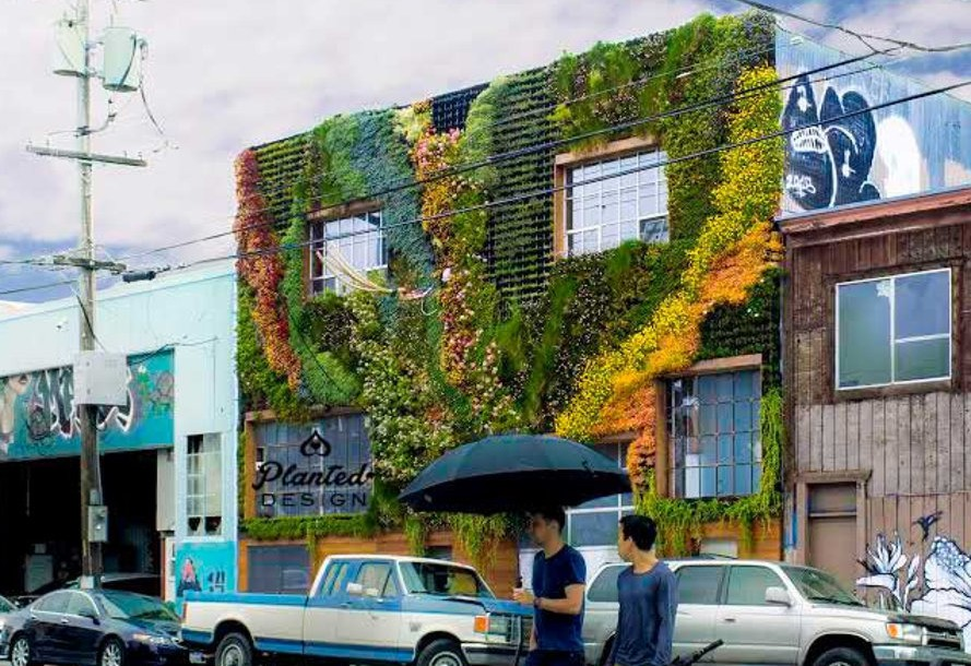 Planted-Design-Living-Wall-9-cropped-889x610 (1)