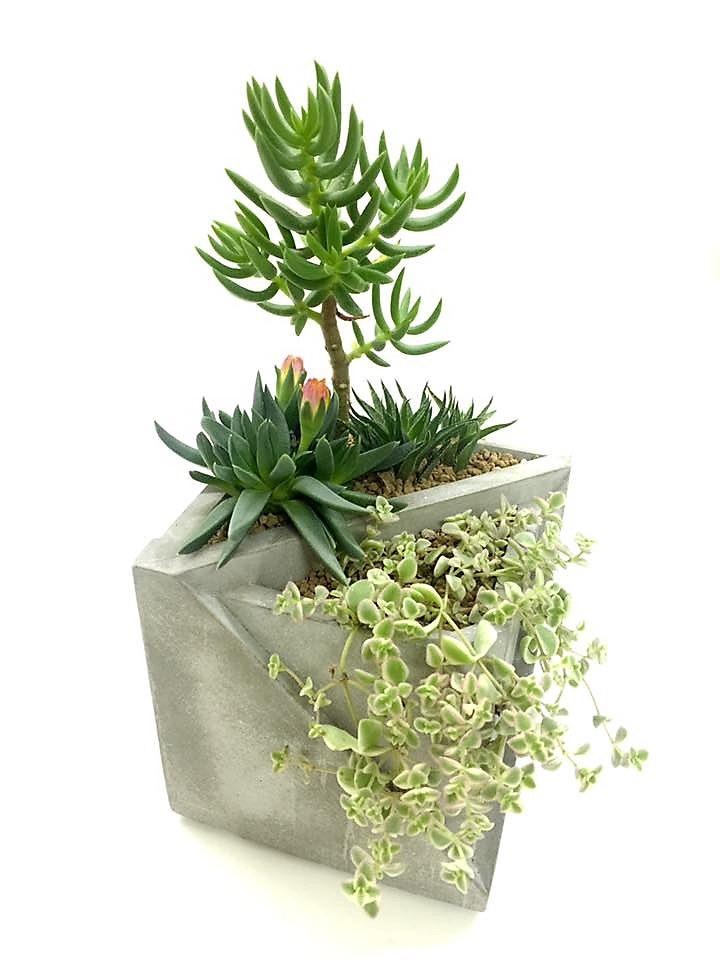 concrete flower pot, 水泥小花盆