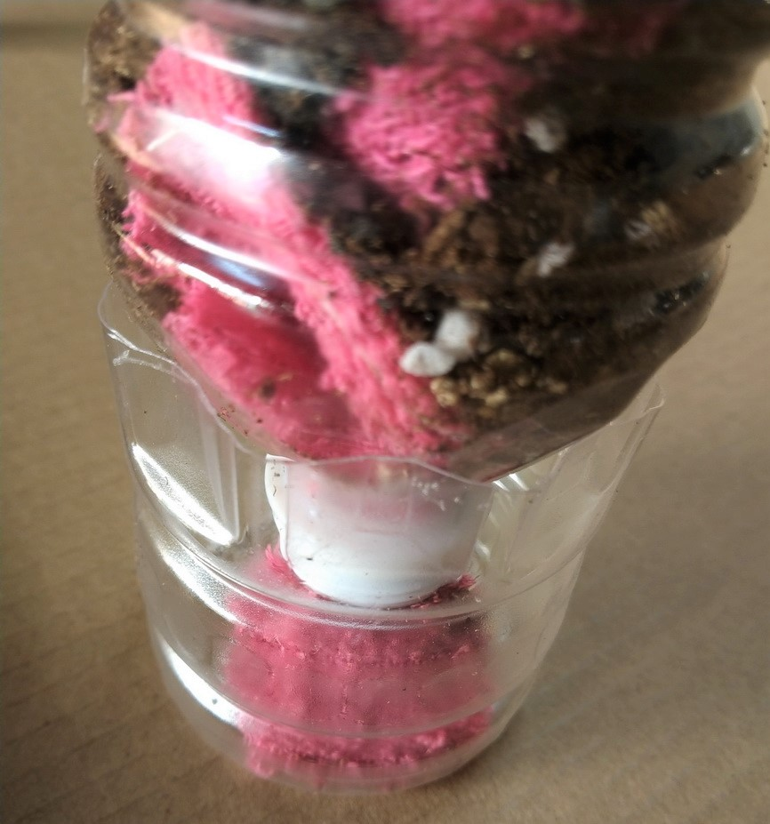環保回收寶特瓶DIY花盆算動補水