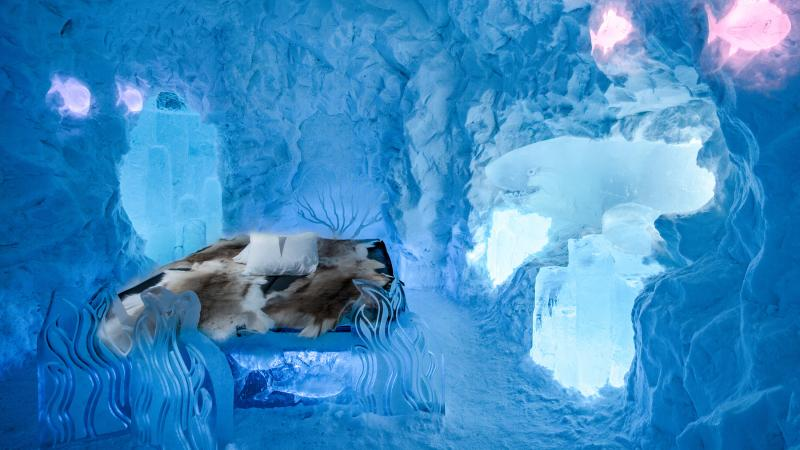 An art suite of sea life in ice and snow at Icehotel
