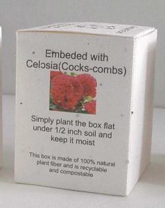 種子紙做成包裝紙盒
