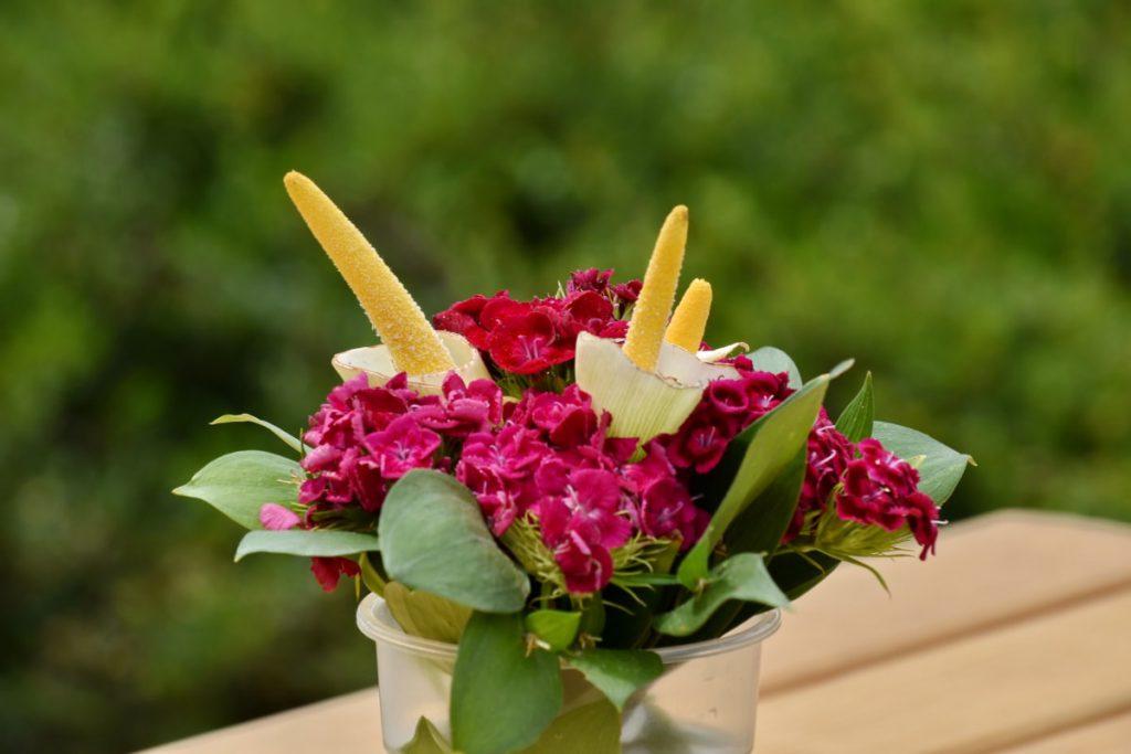 康乃馨盆栽裝飾